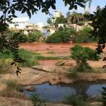 Em Valadares, #G1 mostra os efeitos do desastre ambiental de Mariana https://t.co/oVc1ciTYAW #RioDoce https://t.co/eGGmXVFasi