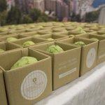 El restaurante Strachan presenta su catering sostenible https://t.co/ahlHcQwekx #Málaga https://t.co/bLbZp57KaN