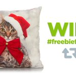 RT & follow for chance to #win a cute cushion #becauseitschristmas Ends 27/11 https://t.co/njuFCfXs6u #FreebieFriday https://t.co/e91eZVcdcF