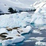 [MUNDO] Alertan de la amenaza de la pérdida descontrolada de hielo en la Antártida. https://t.co/ykMW2NC2lJ https://t.co/NTFmoPoSS2