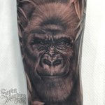 Close up of yesterdays jungle themed half sleeve #sevenmagpiestattoos https://t.co/GeyQ6QsJV7