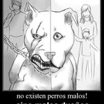 basta de maltrato animal! https://t.co/NaaIzq7kPI