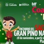 Amig@s los espero mañana en el encendido del Gran Pino Navideño, 19.30 hrs, Plaza de Armas #Saltillo https://t.co/QYWtvxctds