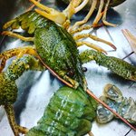 Crayfish are on tomorrow @AniarGalway https://t.co/iMRq8hWcNX