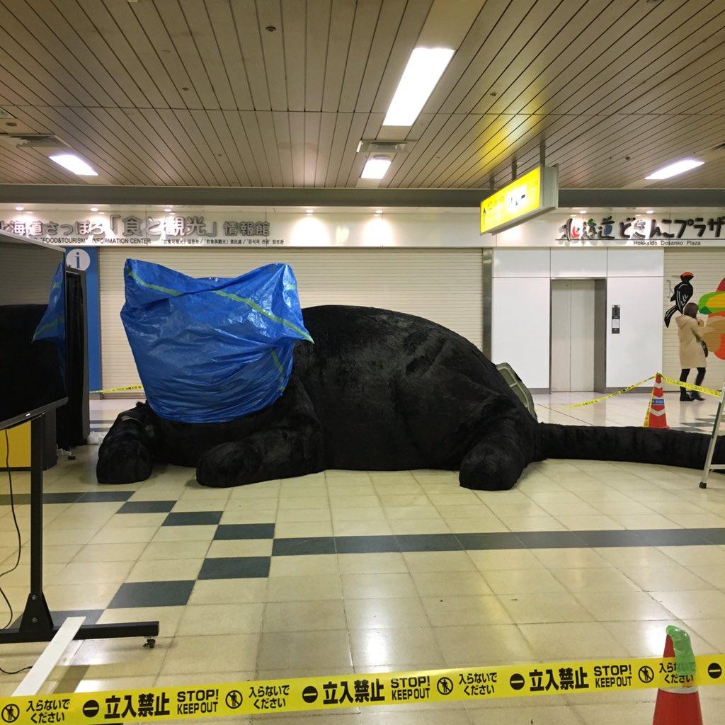 札幌何かが横たわる https://t.co/x1MfYklwqK