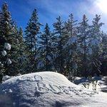 #GoBuffs from Winter Park, Colorado! https://t.co/ZpdiFJyEub