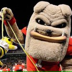 TO HELL WITH GEORGIA TECH! #GoDawgs https://t.co/rjbtD4mfRC