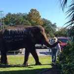 There is an actual elephant at the Trump rally. GUYS - AN ACTUAL ELEPHANT. https://t.co/WoHWCz3LAs