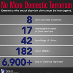 """Its high time we call clinic violence what it is: domestic terrorism. WTF about these numbers is """"pro life""""? https://t.co/RVuiFKv75H"""