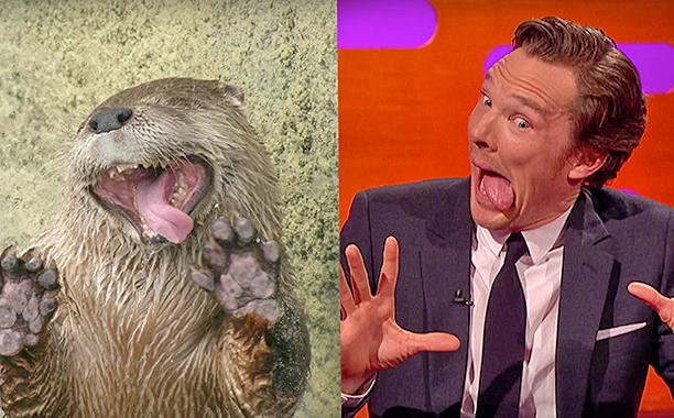 Benedict Cumberbatch imitates otters with Johnny Depp on 'The Graham Norton Show':