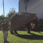 Elephant spotted at Donald Trump rally in Sarasota, via @JordynPhelps https://t.co/2SLY22Vxap
