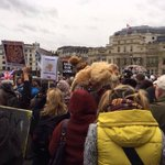 Hundreds march in #London for the Lions today #bredforthebullet #BanCannedHunting https://t.co/jA2c04orcR