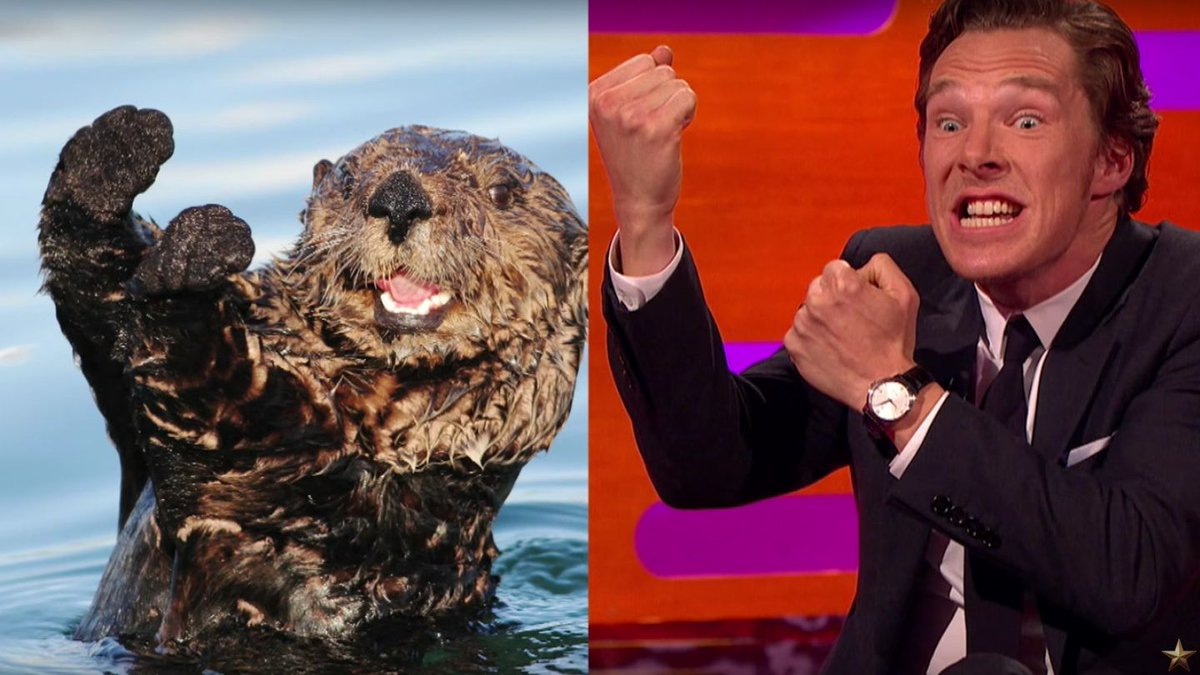 Here's How Benedict Cumberbatch Proves He's Not 'A Cute Otter' Anymore