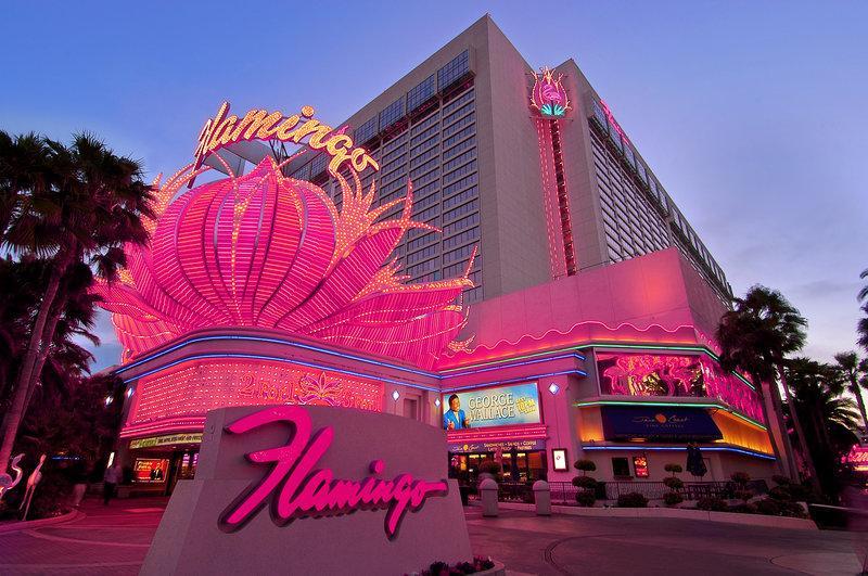 25% Off Flamingo and other Caesars Las Vegas Hotel Rooms >> https://t.co/tMklo4fdUs https://t.co/q7mmpVVBI7