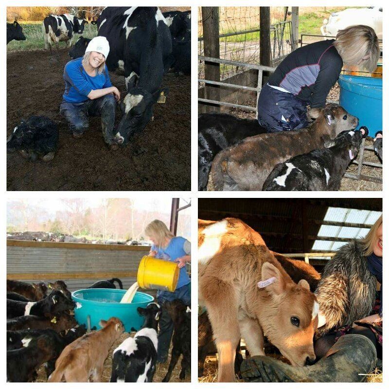 @condy_ian #wecare4calves #caring4calves https://t.co/gPn3KCkcOS