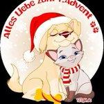 Guten Morgen????ihr Lieben???? Klein????wünscht euch von ganzem❤einen schönen 1.Advent???????? Kaffee steht bereit☕☕☕ Knuddel euch???? https://t.co/uvAUIeZaD6
