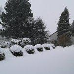Schönen 1.#Advent #Wintergruß aus dem #Fichtelgebirge @bn79544397 @Fewo_Bodensee @BeatrixEggeling @blondie_6867 ????????❄⛄ https://t.co/aPKe0Fbptx