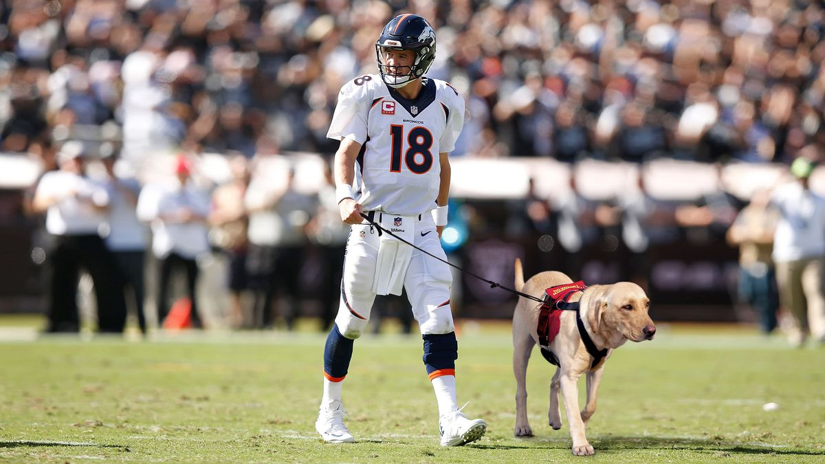 Aging Peyton Manning Now Forced To Take Field With Assistance Dog https://t.co/kQaZUSrk3j https://t.co/SFjPvDVJST