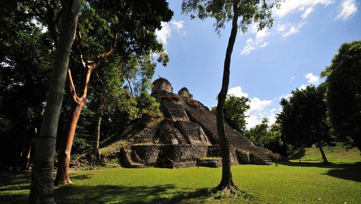 Una foto de la Zona Arqueológica de Dzibanché en #QuintanaRoo. #MiPatrimonio https://t.co/lQZHoxS8T4