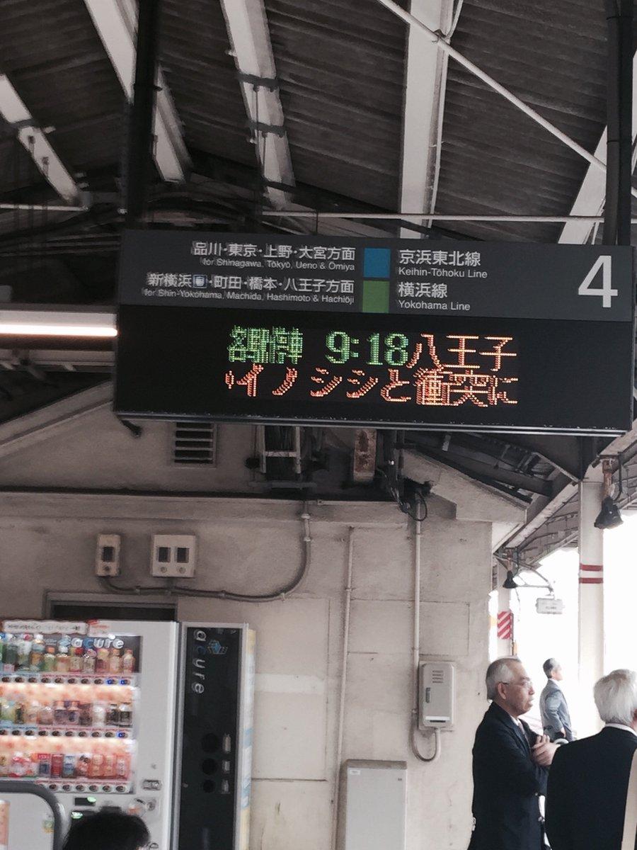 高崎線イノシシと衝突で遅延とのこと。 https://t.co/zjn7oLC1QU