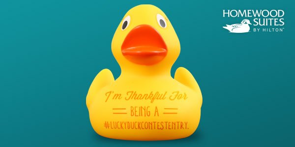 Share why U R thankful using #LuckyDuckContestEntry! U could go 2 next year's parade! Rules: https://t.co/CZxKua9Ocz https://t.co/vyvKbOLtdp