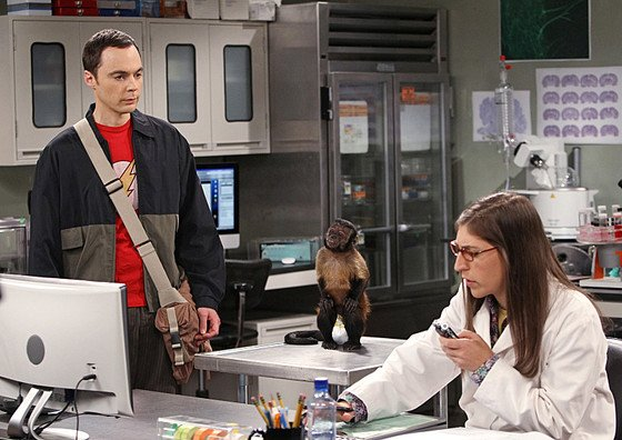 Sheldon and Amy's big bang is happening on The Big Bang Theory: