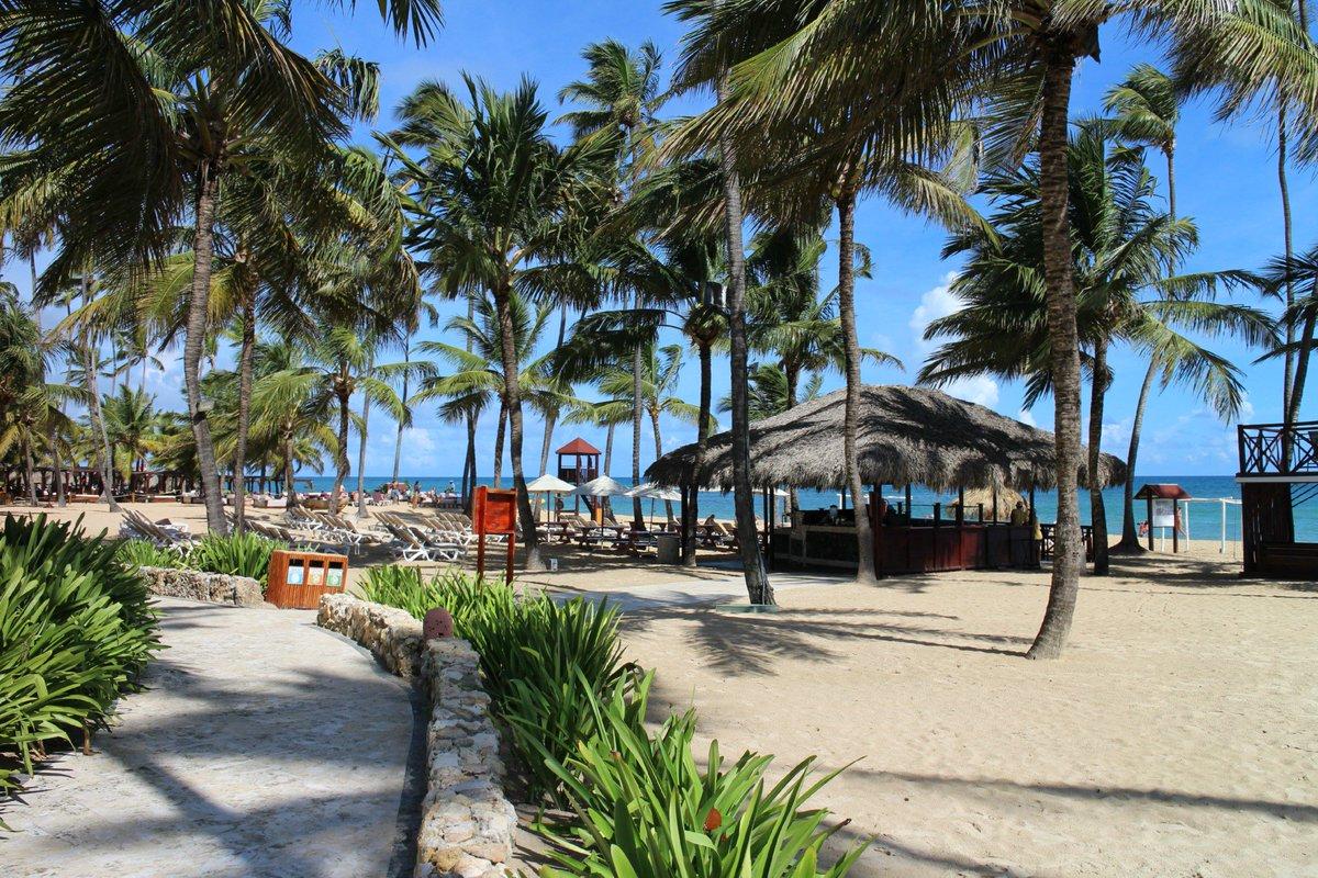 We're enjoying a gorgeous #BeachThursday from #DreamsPuntaCana! Wish you were here! https://t.co/BXDCNKx2yK https://t.co/Hoo3gBUADf