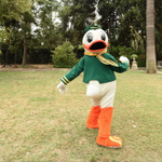 Don't be so coy, Oregon Duck. We know you're fired up for #UOvsORST. #HeismanHouse https://t.co/7gpkeZ0TO2