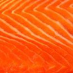 It only took the FDA 20 years to let you eat genetically modified salmon: https://t.co/VeKZ3eOSTe https://t.co/raGjZVW1rj