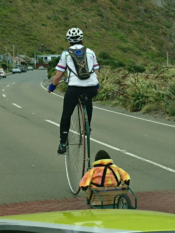 RANDOM! I just saw a guy riding a penny-farthing, towing a trailer with a huge soft toy penguin in it! #Wellington https://t.co/rK6YYo7mla