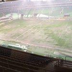 """""""A drenagem do Allianz Parque é um lixo"""" Chora mais. https://t.co/O1y6lB44op"""