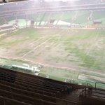 Gramado do Allianz Parque mais cedo. O Palmeiras pega o Coritiba hoje à noite #ESPN https://t.co/r19H2tYLZl