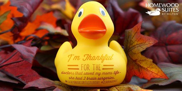 @ZerinaGrace You're a Lucky Duck! Get friends & followers 2 RT this 4 the opp. 2 win! Rules: https://t.co/CZxKua9Ocz https://t.co/AVaX93SvxS