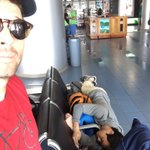 The trip seems to have taken a toll on @OsricChau. (The steel armrests make this arrangement particularly comfy.) https://t.co/EFqcfCPQjG