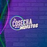 Graciaaaaaaas tiquitos!   A partir del jueves #LaCosechadelosMoritos !  😁😁😁😍😍😍💑💑💑 💜 https://t.co/7hGQ56w9RP