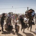 Miles de #refugiadas sufren violencia en origen y tránsito por falta de #VíasSeguras #25N #NoalaViolenciadeGénero https://t.co/sEba29PCmK