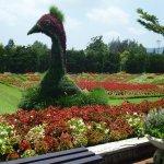Taman Bunga Nusantara di Jawa Barat Seperti di Eropa https://t.co/OhhU1clg8m via @detikTravel https://t.co/DBb7C2STSS