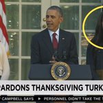 Your face when your dad has to pardon a goddamn turkey. https://t.co/kwjjpX27lz