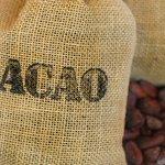 El cacao y el té verde pueden tratar efectos de la #diabetes ► https://t.co/AI2acbBRry https://t.co/mx0Ci6gJT4