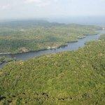 Amazonía pierde entre 2000 y 2013 una superficie similar a Reino Unido ► https://t.co/wGSt5P6r2l https://t.co/M0cFc0XjZq
