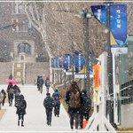 ภาพหิมะตกที่กรุงโซล วันนี้ ที่มหาวิทยาลัยยอนเซ cr: https://t.co/avlM76x8Wn https://t.co/Y8ceUdxtUA