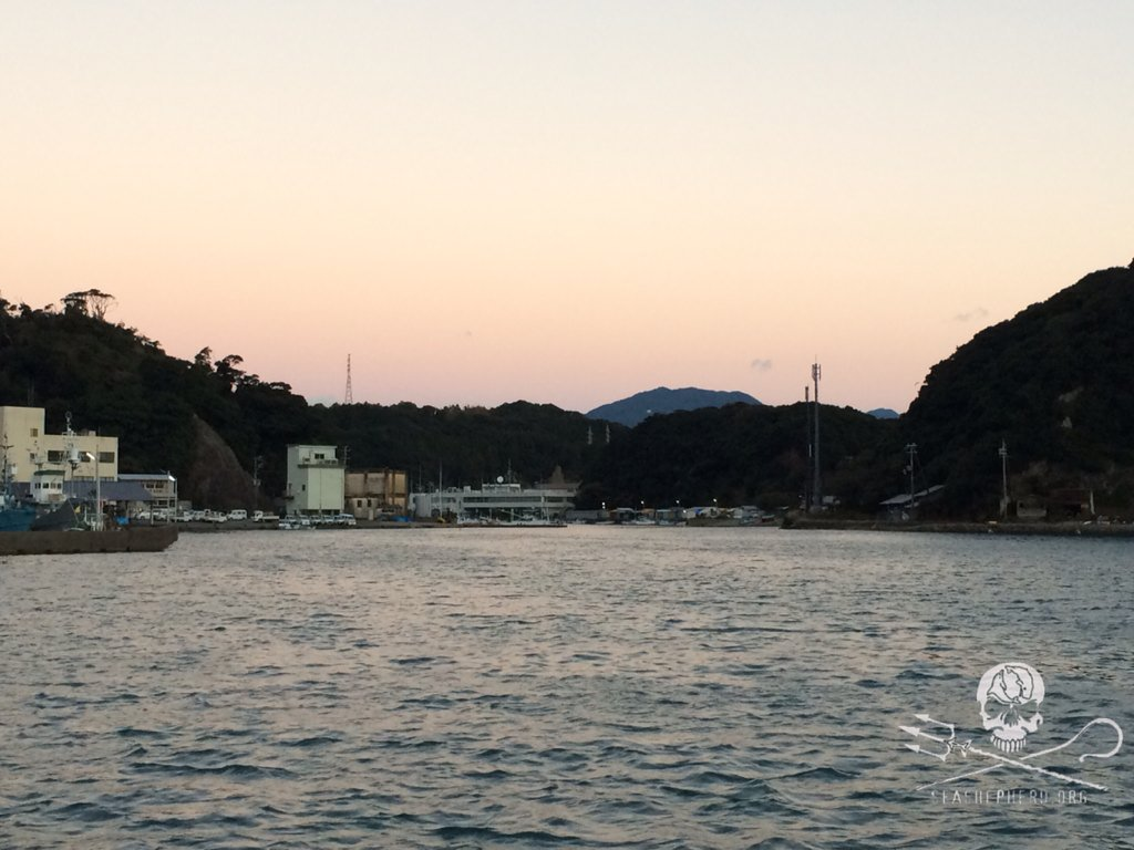 RT @CoveGuardians: 0630am: Wind and swell keep hunters away from free dolphins. BLUE COVE DAY! #tweet4taiji https://t.co/Ic6Q7GwkFy