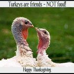 Happy Thanksgiving to all whatever you choose 2 eat! Thankful for your friendship! #vegan #Thanksgiving #LOVE -Nadel https://t.co/wMK9Wbyagt