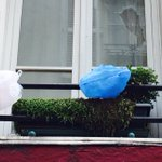 Quand tes voisins sont #FiersdelaFrance mais quils nont pas de drapeau. https://t.co/hwGdn0CFqX