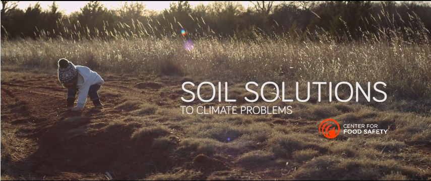 .@michaelpollan narrates a new video for @CFSTrueFood on the need to @rebuildsoil https://t.co/ILXZJr8ECV #COP21 https://t.co/up6c9LJrhh