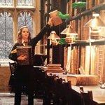 como assim.............  o livro nao se arrumava sozinho?? j.k rowling sua tiriça https://t.co/UYNmfcSgvW