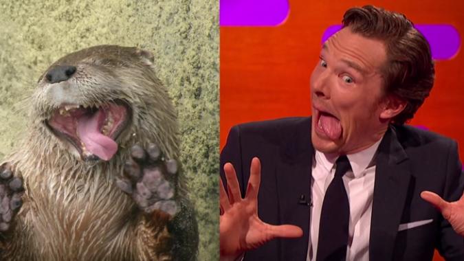 Watch Benedict Cumberbatch Go