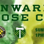 We did it! 2015 Western Conference Champions! Pack your bags, boys & girls, next stop: Columbus! #RCTID https://t.co/cS1KOI4DYu