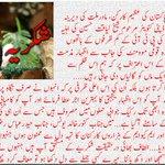 @OfficialMqm @HaiderRizviMQM @WasayJalil @faisalsubzwari @KunwarKhalidYun @nadeem_nusrat @WaseemAkhtar90 @azizabadi https://t.co/tk8b8p5lH4
