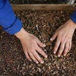 МВД: бандиты под Хабаровском похитили 3 тонны кедровых орешков https://t.co/M1GSTgriO9 https://t.co/2toQ9Fhxrh